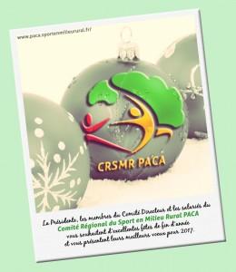 CRSMR voeux 2017 - V2